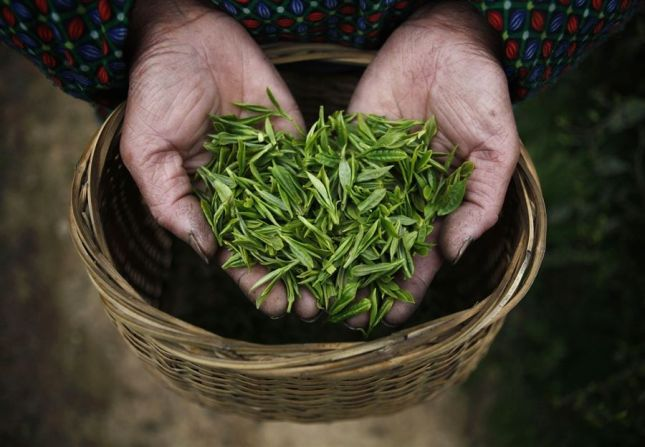 A handful of tea leaves